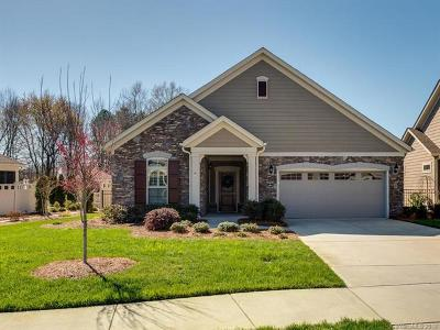 Matthews Single Family Home For Sale: 1007 Quincy Hollow Drive