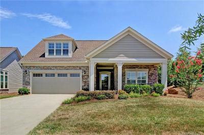 Mooresville Single Family Home For Sale: 165 Brawley Point Circle
