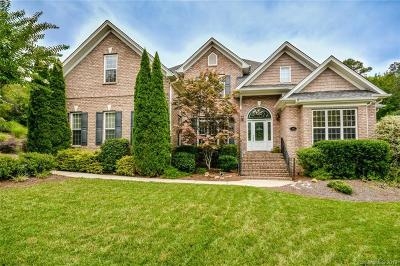Mooresville, Kannapolis Single Family Home For Sale: 165 Palmer Marsh Place #313&