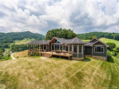 Waynesville Single Family Home For Sale: 2486 Rabbit Skin Road