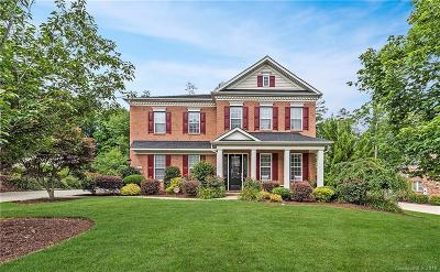 Belmont Single Family Home For Sale: 4200 Belle Meade Circle