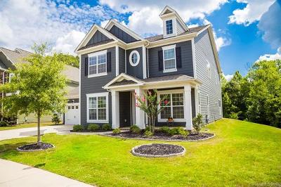 Cabarrus County Single Family Home For Sale: 10576 Skipping Rock Lane