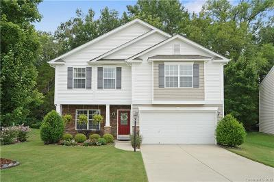 Charlotte Single Family Home For Sale: 14126 Waterlyn Drive