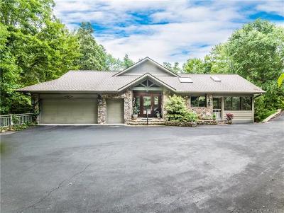 Hendersonville Single Family Home For Sale: 117 Little Cherokee Ridge