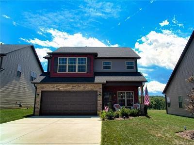 Arden Single Family Home For Sale: 69 Mallard Run Drive #48