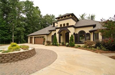 Lake Wylie Single Family Home For Sale: 721 Anchors Bend Cove #LOT 3 AN