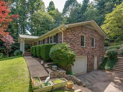 Saluda Single Family Home For Sale: 423 Laurel Drive