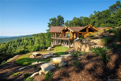 Black Mountain Single Family Home For Sale: 29 Cliffledge Trail