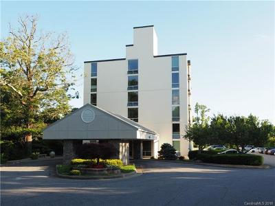 Asheville Condo/Townhouse For Sale: 647 Town Mountain Road #102