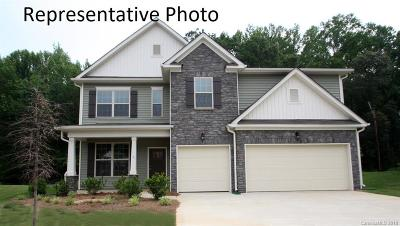 Lancaster Single Family Home Under Contract-Show: 2941 Bridgewater Street #56