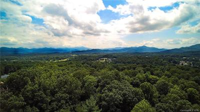 Buncombe County Residential Lots & Land For Sale: 83 Challedon Drive