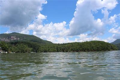 Lake Lure NC Residential Lots & Land For Sale: $20,000,000