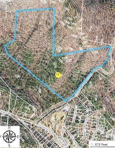 Lake Lure Residential Lots & Land For Sale: Tract 4 Old Sand Branch Road