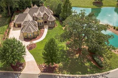 Waxhaw, Weddington Single Family Home For Sale: 8119 Skyecroft Commons Drive