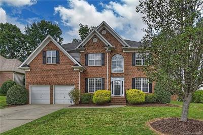 Charlotte Single Family Home For Sale: 11601 Sir Francis Drake Drive