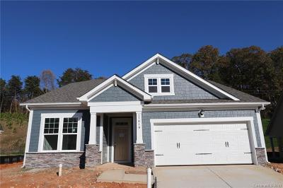 Charlotte Single Family Home For Sale: 17019 Challory Glen Way