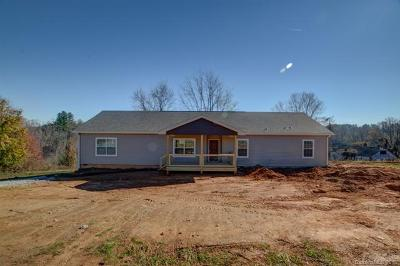 Mills River Single Family Home For Sale: 24 Round Top Circle