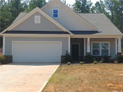 Waxhaw Single Family Home For Sale: 6607 Buck Horn Place