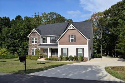 Denver Single Family Home For Sale: 3942 Blue Dory Lane