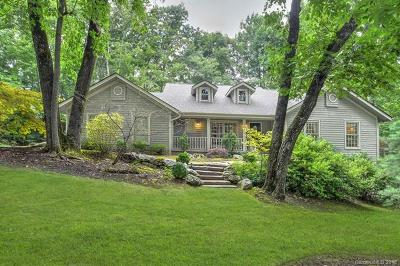 Hendersonville Single Family Home For Sale: 105 Little Cherokee Ridge