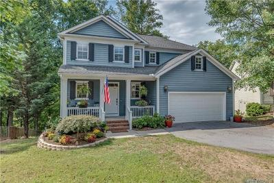 Candler Single Family Home For Sale: 7 Hoolet Court