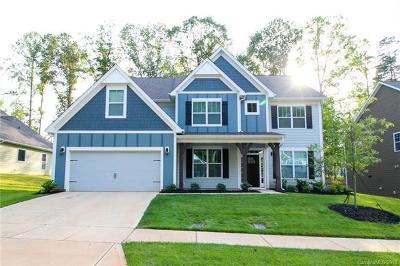 Mooresville Single Family Home For Sale: 131 Canoe Pole Lane #108