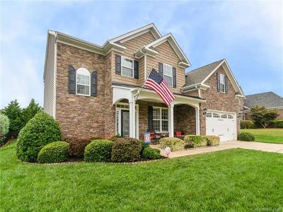 Lake Wylie Single Family Home For Sale: 2007 Curry Lane