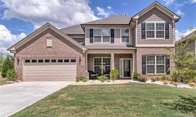 Indian Land Single Family Home For Sale: 1105 Wellington Avenue
