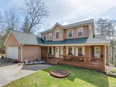 Hendersonville Single Family Home For Sale: 25 W Turkey Paw Trail