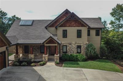 Buncombe County, Haywood County, Henderson County, Madison County Single Family Home For Sale: 192 Brock Creek Road