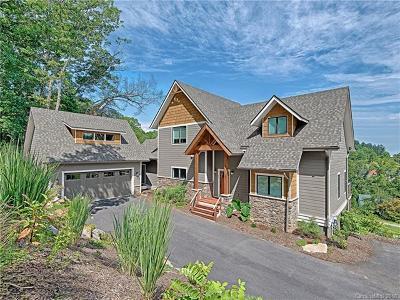 Asheville Single Family Home For Sale: 67 Magnolia Farms Drive