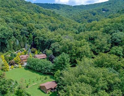 Asheville NC Single Family Home For Sale: $1,590,000