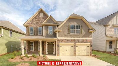 Statesville Single Family Home For Sale: 147 Margo Lane #25