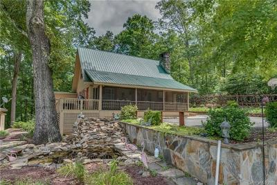 Bat Cave, Chimney Rock, Lake Lure, Gerton, Black Mountain, Mill Spring, Rutherfordton, Columbus, Tryon, Saluda, Union Mills, Hendersonville Single Family Home For Sale: 117 Raleigh Drive