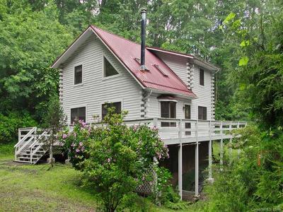 Canton Single Family Home For Sale: 172 Muszynski Drive