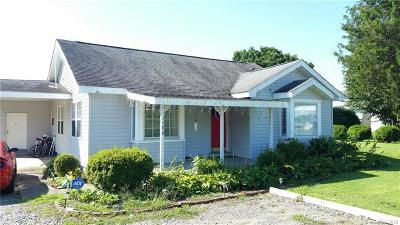 Brevard Single Family Home For Sale: 1480 Old Hendersonville Highway