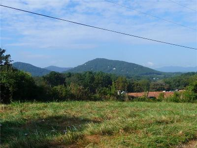 Buncombe County, Haywood County, Henderson County, Madison County Residential Lots & Land For Sale: 41 McIntosh Road