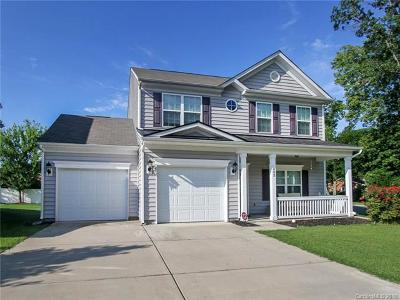 Pineville Single Family Home For Sale: 802 Traditions Park Drive