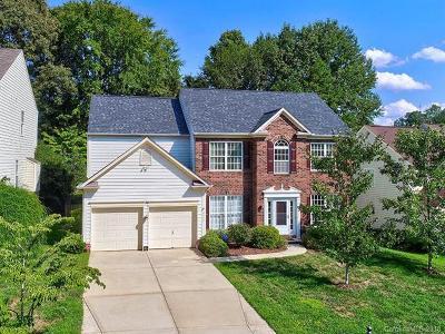 Huntersville Single Family Home For Sale: 8006 Sandowne Lane