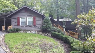 Bat Cave, Chimney Rock, Black Mountain, Lake Lure, Rutherfordton, Columbus, Mill Spring, Tryon, Saluda Single Family Home For Sale: 892 Pearson Falls Road