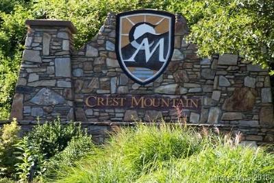 Asheville Residential Lots & Land For Sale: 41 Ben Lippen School Road