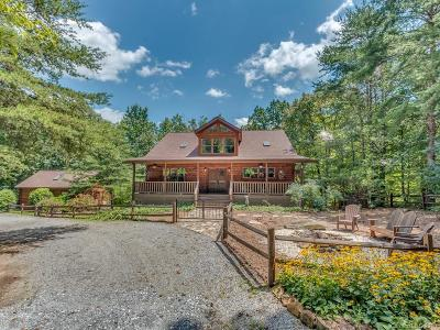 Lake Lure NC Single Family Home Under Contract-Show: $369,900
