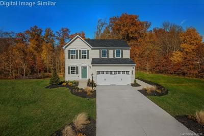 Harrisburg, Kannapolis Single Family Home For Sale: 10289 October Glory Drive #164