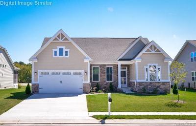 Harrisburg, Kannapolis Single Family Home For Sale: 10478 Black Locust Lane #35