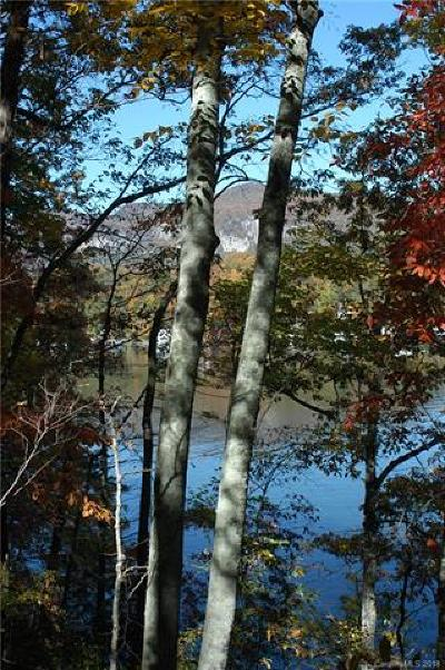 Lake Lure Residential Lots & Land For Sale: Lot 2 Hawthorne Drive #2