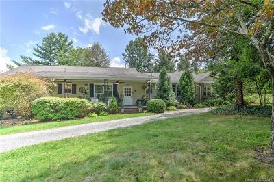 Hendersonville Single Family Home For Sale: 1510 Kanuga Road