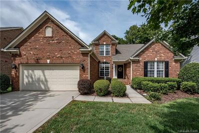 Rock Hill Single Family Home Under Contract-Show: 1373 Shimmer Light Circle