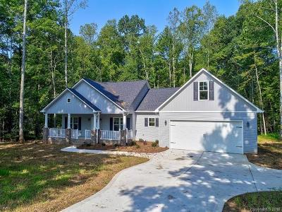 Lincoln County Single Family Home For Sale: 702 Brevard Place Road