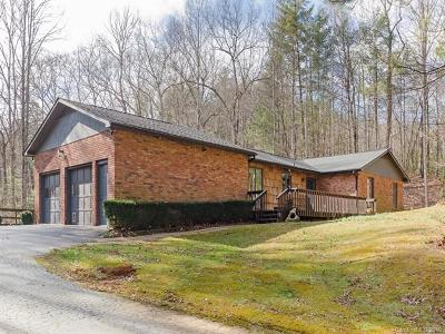 Transylvania County Single Family Home For Sale: 153 Spring Cove Drive