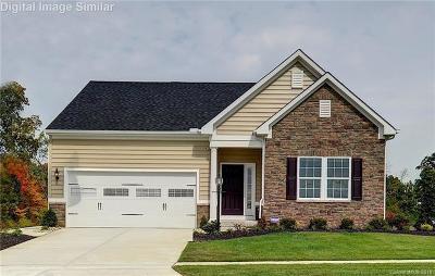 Mecklenburg County Single Family Home For Sale: 11639 Banter Lane #179